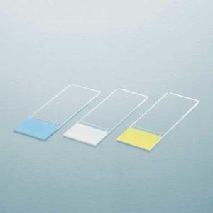 CCI-D-slides-coloured